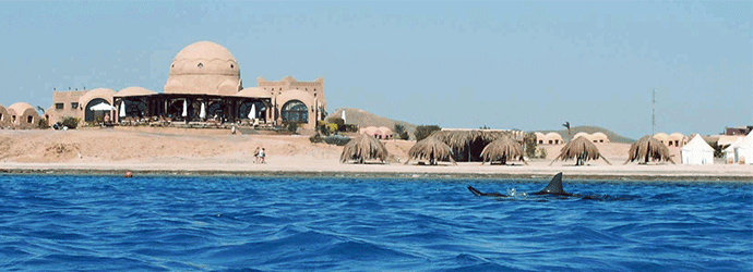 marsa_shagra_at_red_sea_diving_safari.png